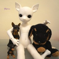 ALBU-WHE Mimi x Hujoo 28cm Dog Bjd Body Albu Min Pin Doll White