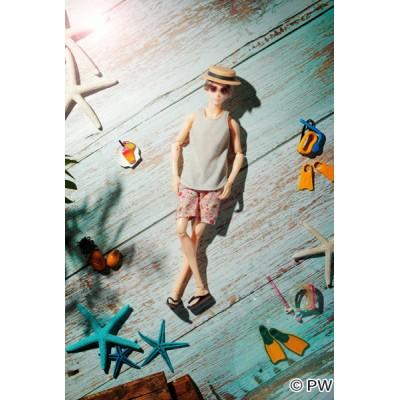 1921041  Petworks 1/6 Boys & Male Album Beach Style EIGHT ~ NEW ~