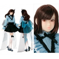 Momoko A Tearly Drop 27cm Girl Fashion Doll  219636